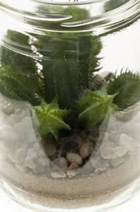 Bilde av Kunstig Cactus Sukkulent 12cm