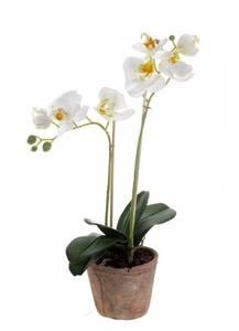 Bilde av Kunstig Orkide i Retropotte Hvit 42cm