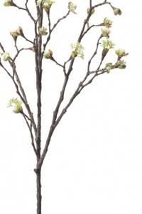 Bilde av Kunstig Maple Frukt Gren Kremhvit 110cm
